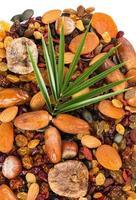 variatie droog fruit, schot van bovenaf foto