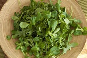 plaat van salade foto