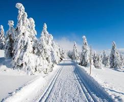 winters landschap met aangepaste langlaufroute