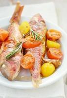 gebakken surmullet met cherrytomaatjes, knoflook en rozemarijn foto