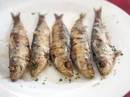 gebakken sardines foto