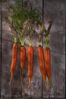 bos wortelen foto