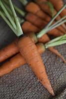 baby wortelen foto