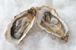 Franse voorgerecht oesters