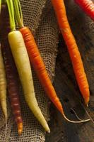 kleurrijke multi gekleurde rauwe wortelen