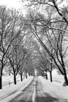 begraafplaats in de sneeuw foto