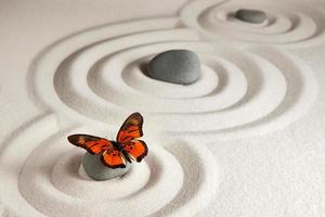 zen rotsen met vlinder foto