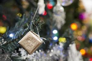 kerstbomen foto