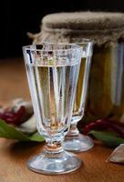 Russische wodka met gepekelde komkommers foto