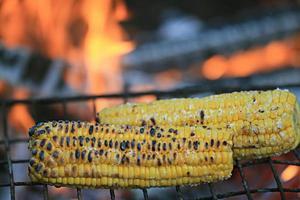 maïs grill foto