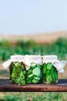 ingelegde komkommers gemaakt met groenten en kruiden uit de moestuin