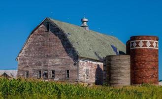 verweerde schuur, silo's, maïsveld