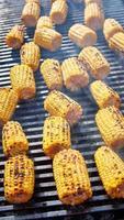 biologische gegrilde maïs foto
