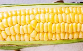 maïs met groen blad foto