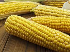 rijpe maïs foto