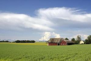 Zweeds landschap