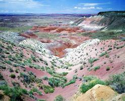 geschilderde woestijn foto
