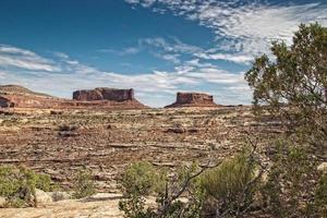 canyonlands nationaal park foto