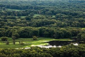 Mississippi River uiterwaarden foto