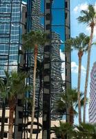 Tampa in het centrum