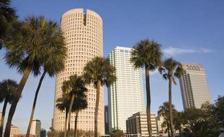 palmen en wolkenkrabbers