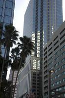 Tampa in het centrum foto