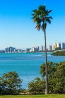 clearwater, florida foto