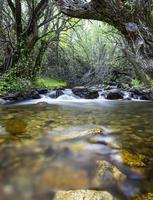 landschap rivier foto