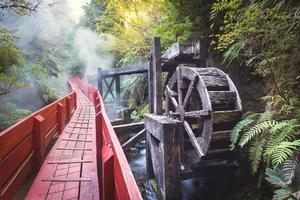thermische bronnen in nationaal park villarica, chili foto