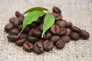 koffiebonen foto