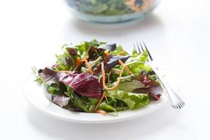 groene salade op wit