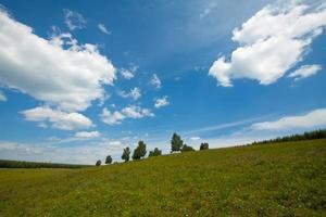 grasland landschap foto
