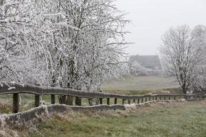 rijp winterlandschap