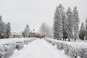 winterlandschap in Sigulda. foto