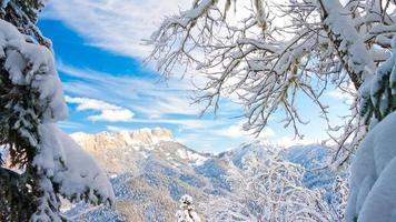 winterdag kerst landschap