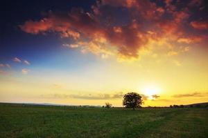 lente landschap bij zonsondergang