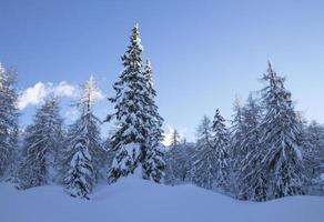 besneeuwde landschap in de bergen foto