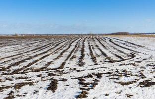 landbouwlandschap bij wintertijd foto
