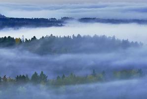 mistige ochtend in het landschap foto