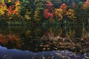 herfst meer