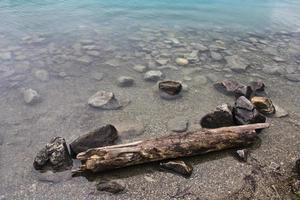 drijfhout in Emerald Lake, Alberta foto