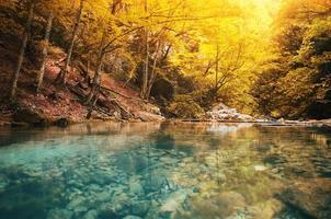 meer in het bos
