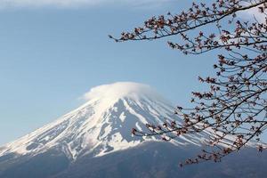 mount fuji en sakura bloeien niet. foto