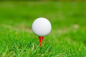 golfbal op tee. groen gras. foto