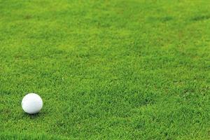 golfbal op het groene gras foto