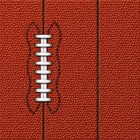 voetbal achtergrond | zeer gedetailleerde textuur foto