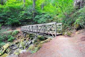 voetgangersbrug op wandelpad foto