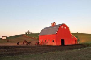 landelijk landschap met rode schuur in palouse foto