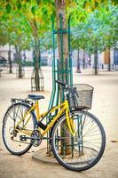 fiets foto