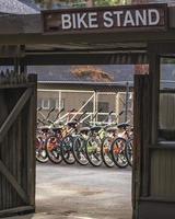 verhuur van fietsen. foto